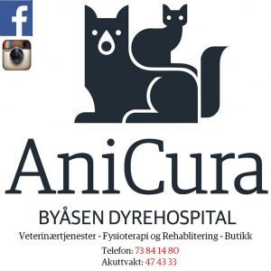 Byaasen_dyrehospital_4
