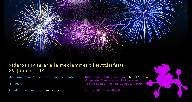 Nyttårsfest for alle medlemmer!